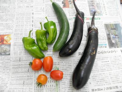 夏の収穫&七夕っぽい料理