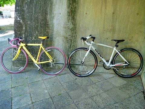自転車の 自転車 サドル 上げ方 : 悪ガキのカヌー日記:GIANT OCR3300