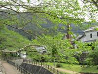 新緑が美しい秘窯の里・大川内山